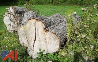 Large Cut Firewood/Logs